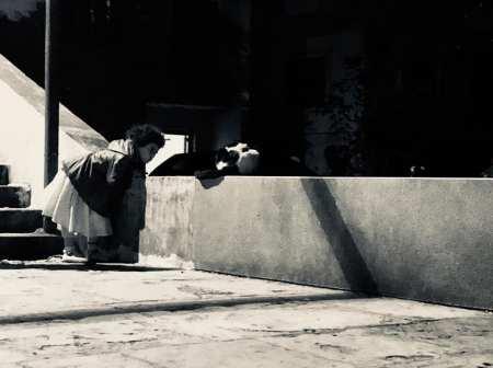 street-art terre origines exil gracia bejjani photo Liban poeme poesie texte litterature ecriture