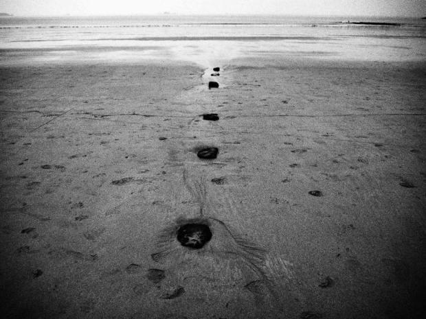 l'élan est discontinu. Fantasque linéarité contre des horizons noyés de silence.