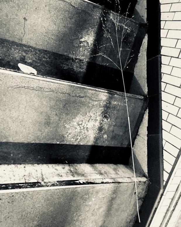 paris brutalité street-photo