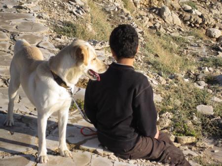 enfant et son chien montagne lien